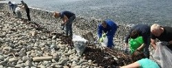 Shoreline Cleaning Bantry Volunteers Wanted